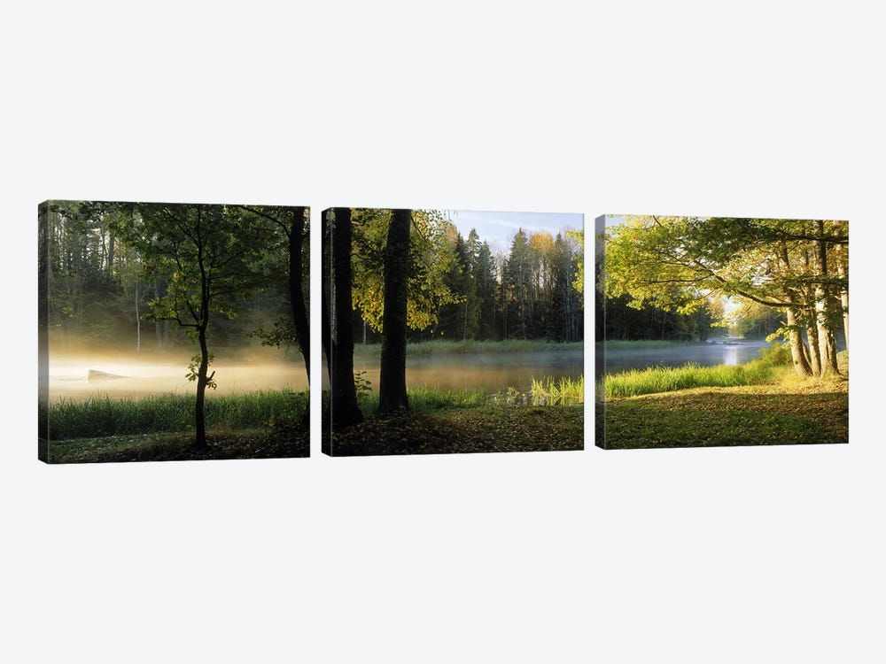 Morning Mist Rising from The Dal River In A Forest Landscape, Sweden by Panoramic Images 3-piece Canvas Art
