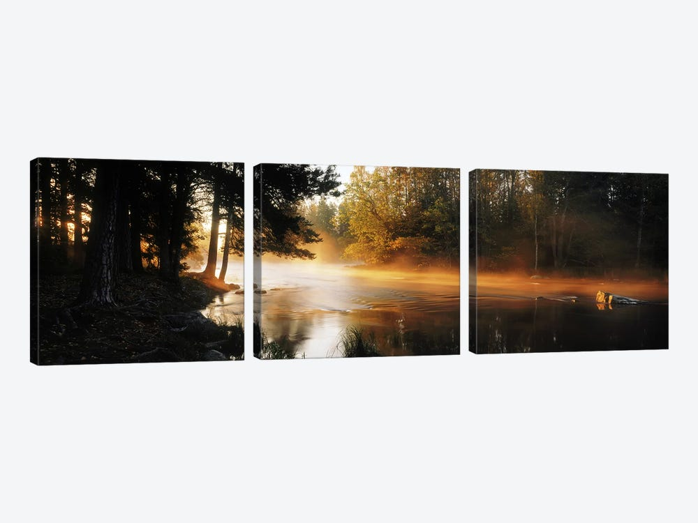 Fog over a riverDal River, Sweden by Panoramic Images 3-piece Canvas Print