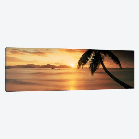 Silhouette of a palm tree on the beach at sunsetAnse Severe, La Digue Island, Seychelles Canvas Print #PIM9860} by Panoramic Images Canvas Wall Art