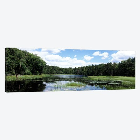 Reflection of clouds in a pondAdirondack Mountains, New York State, USA Canvas Print #PIM9868} by Panoramic Images Canvas Artwork