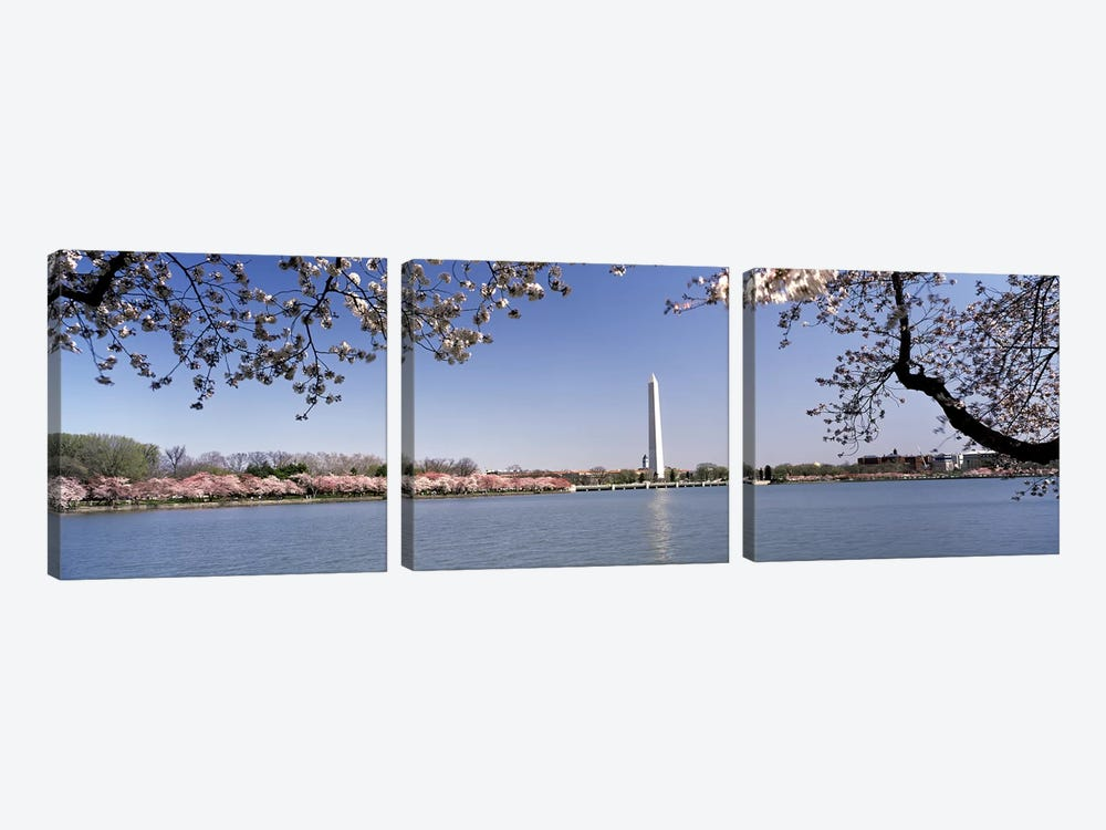 Cherry blossom with monument in the backgroundWashington Monument, Tidal Basin, Washington DC, USA by Panoramic Images 3-piece Art Print