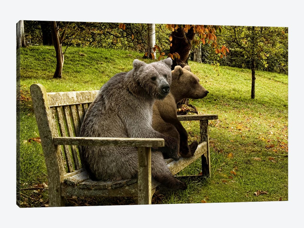 Bears sitting on a bench by Panoramic Images 1-piece Canvas Wall Art