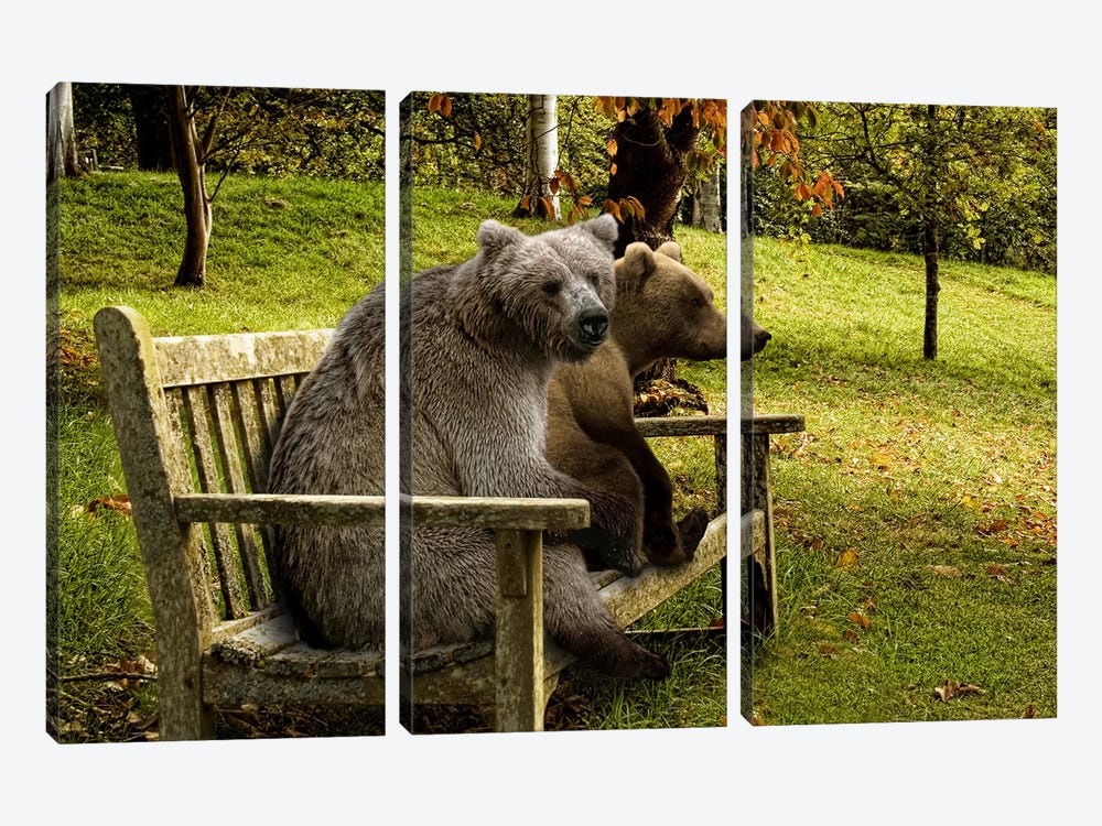 Bears sitting on a bench by Panoramic Images 3-piece Canvas Wall Art
