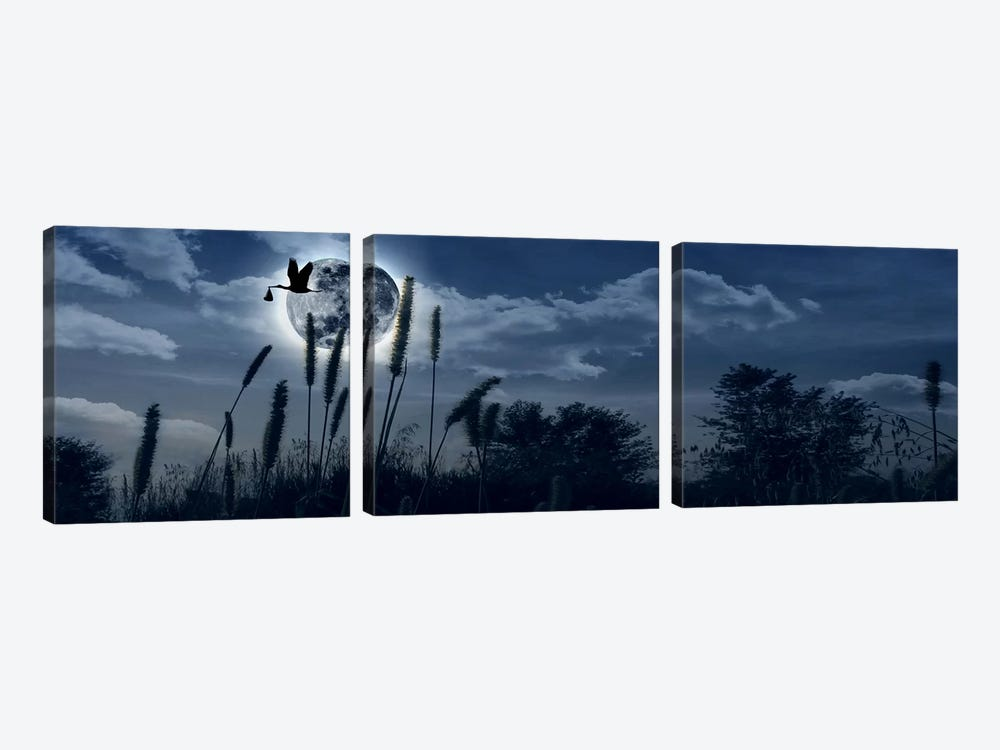 Stork flying with baby in beak over moon by Panoramic Images 3-piece Canvas Artwork