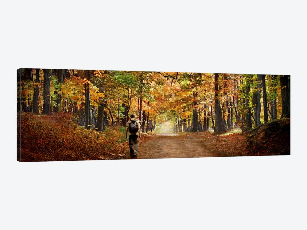 Kid with backpack walking in fall colors by Panoramic Images 1-piece Canvas Art Print