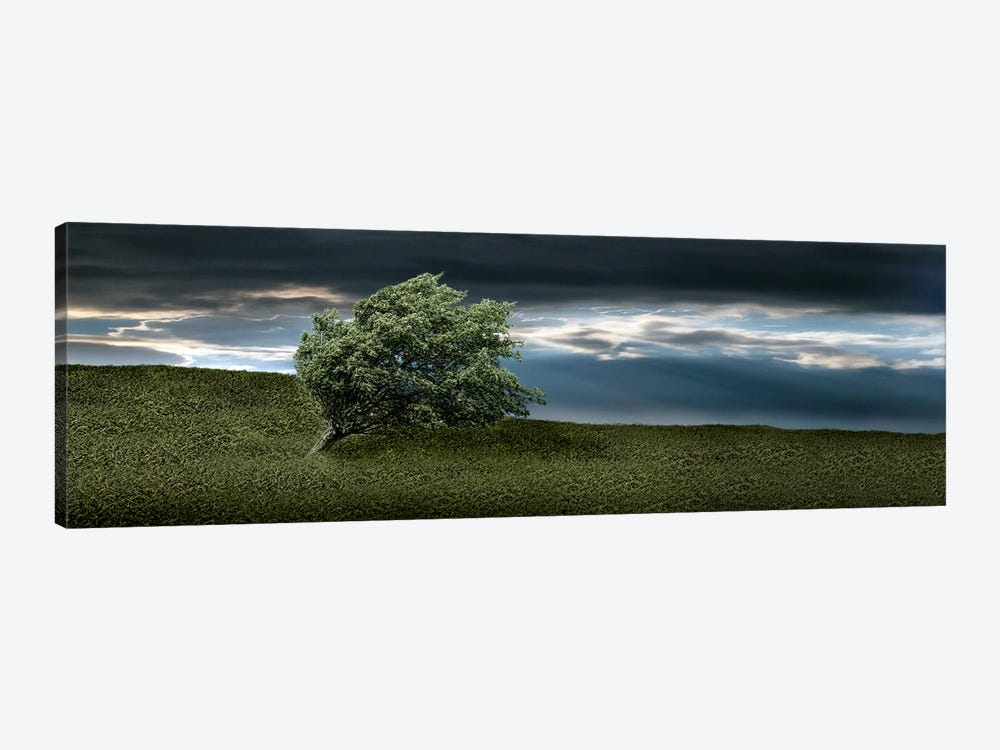 Tree swaying in storm by Panoramic Images 1-piece Canvas Artwork