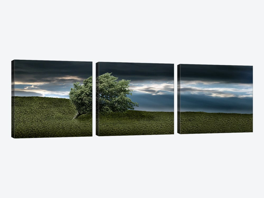 Tree swaying in storm by Panoramic Images 3-piece Canvas Artwork