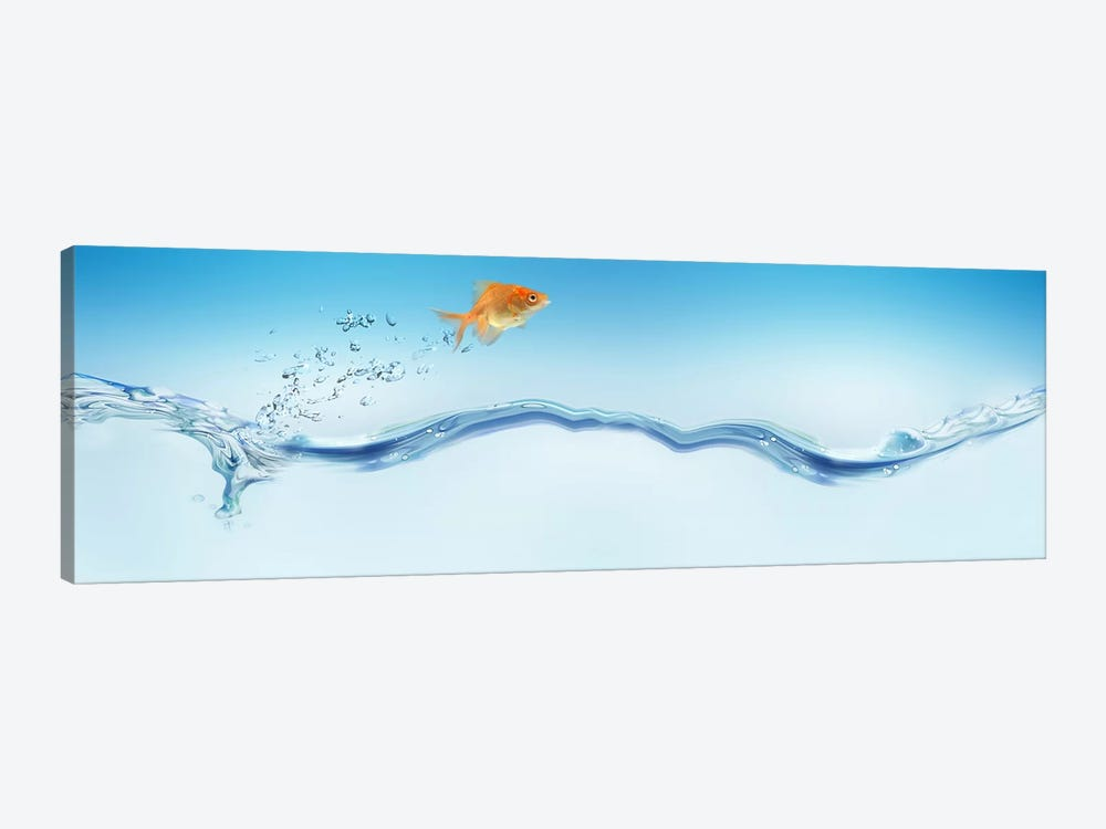 Goldfish jumping out of water by Panoramic Images 1-piece Canvas Print