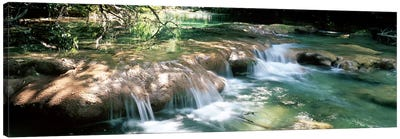 River flowing in summer afternoon light, Siagnole River, Provence-Alpes-Cote d'Azur, France Canvas Art Print