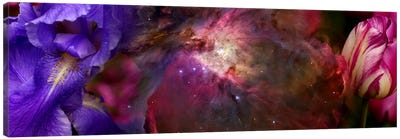 Close-up of Hubble galaxy with iris and tulip flowers Canvas Art Print