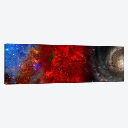 Hubble galaxy with red maple foliage Canvas Print #PIM9958} by Panoramic Images Canvas Art