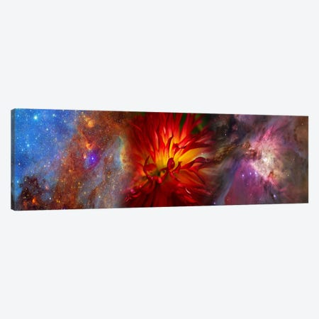 Hubble galaxy with red chrysanthemums Canvas Print #PIM9959} by Panoramic Images Canvas Artwork