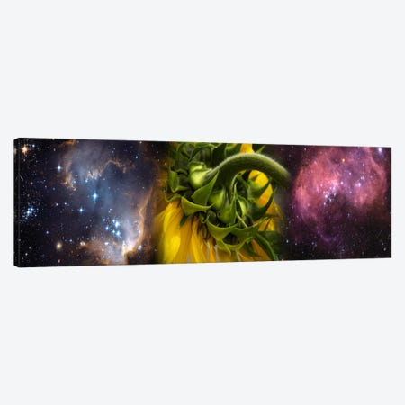 Sunflower in the Hubble cosmos Canvas Print #PIM9963} by Panoramic Images Canvas Art Print