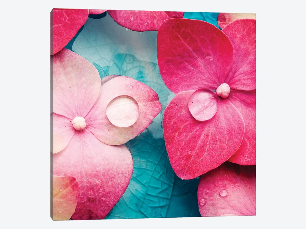 Pink Flowers by PhotoINC Studio 1-piece Canvas Artwork