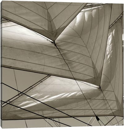 Sails I Canvas Art Print