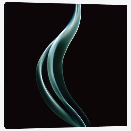 Smoke IV Canvas Print #PIS132} by PhotoINC Studio Canvas Art