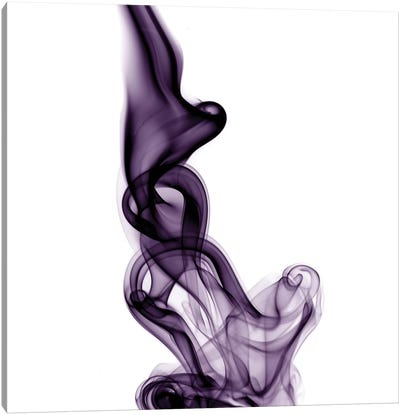 Smoke VII Canvas Art Print