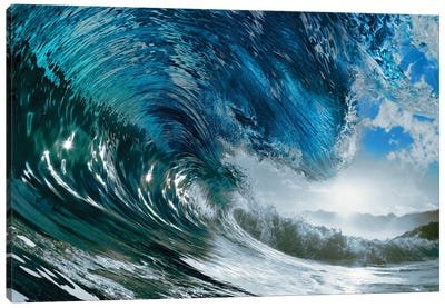 The Wave Canvas Art Print