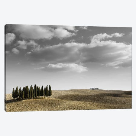 Toscana Landscape II Canvas Print #PIS153} by PhotoINC Studio Canvas Wall Art