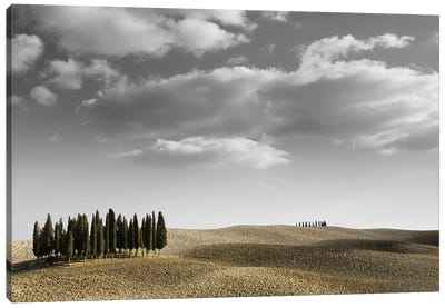 Toscana Landscape II Canvas Print #PIS153