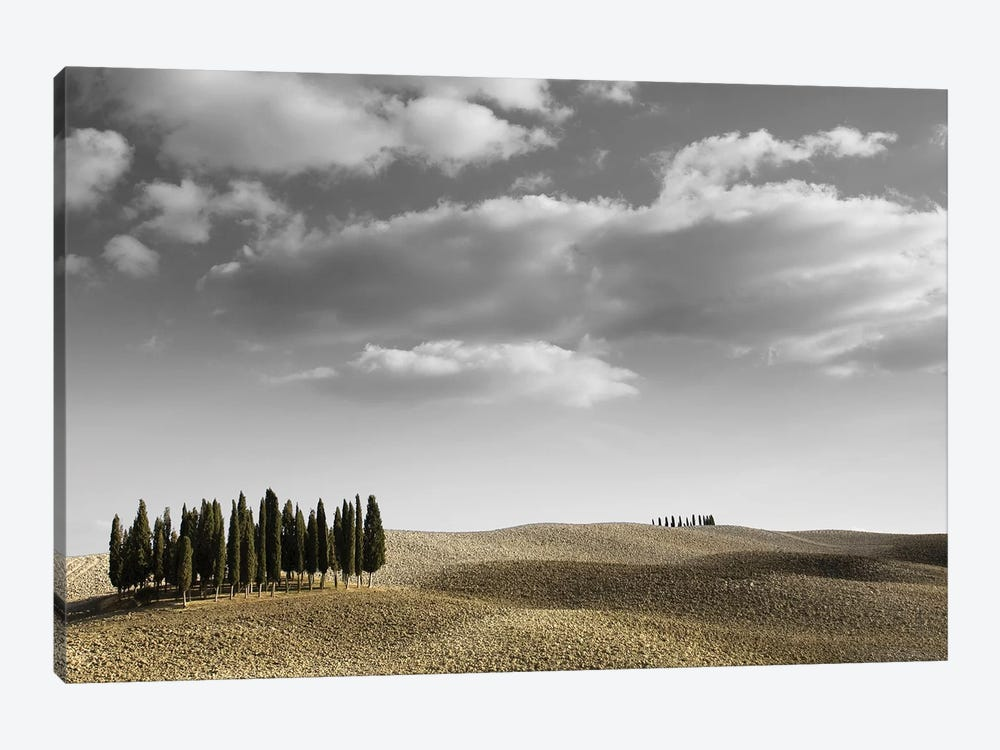 Toscana Landscape II by PhotoINC Studio 1-piece Canvas Art