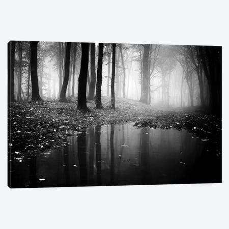 Woods II Canvas Print #PIS174} by PhotoINC Studio Canvas Art Print