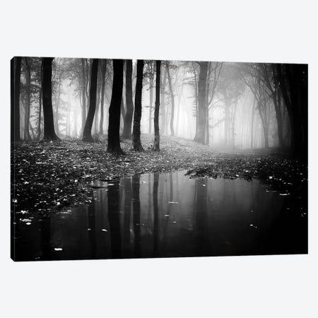 Woods II Canvas Print #PIS174} by PhotoINC Studio Canvas Art Print