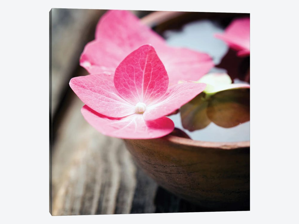 Zen Bowl by PhotoINC Studio 1-piece Canvas Wall Art