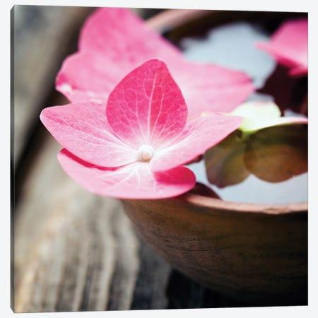 Zen Bowl Canvas Print #PIS180} by PhotoINC Studio Art Print