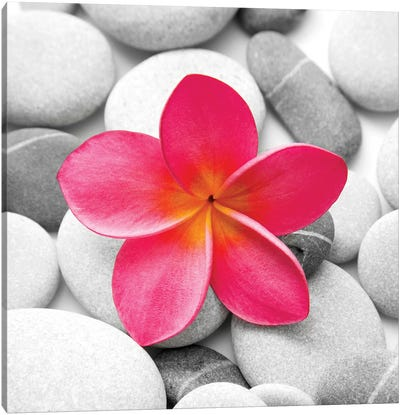 Zen Flower Canvas Art Print
