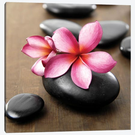 Zen Pebbles IV Canvas Print #PIS187} by PhotoINC Studio Canvas Art