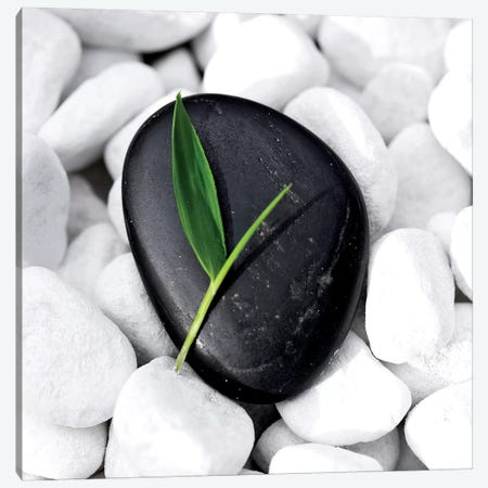 Zen Stone Canvas Print #PIS188} by PhotoINC Studio Canvas Art Print
