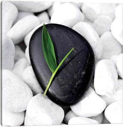 Zen Stone Canvas Art Print