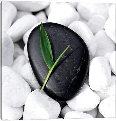 Zen Stone Canvas Art Print