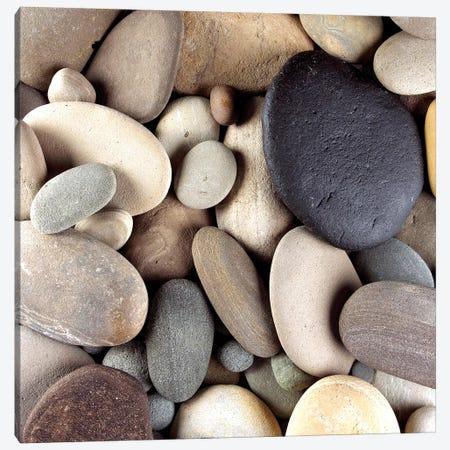 Brown Pebbles Canvas Print #PIS32} by PhotoINC Studio Art Print
