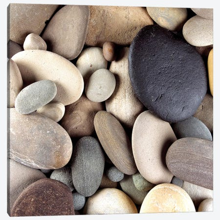 Brown Pebbles Canvas Print #PIS32} by PhotoINC Studio Art Print