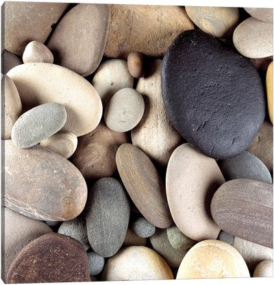 Brown Pebbles Canvas Art Print