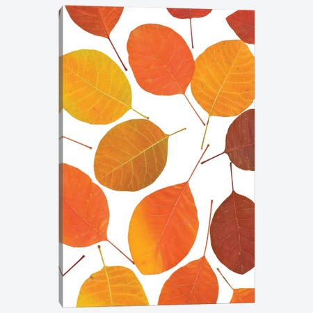 Autumn Leaves 3-Piece Canvas #PIS4} by PhotoINC Studio Canvas Artwork