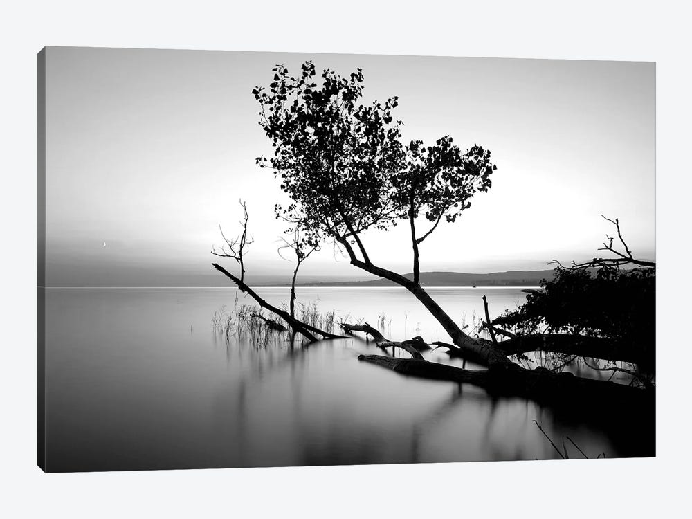 Great Lake by PhotoINC Studio 1-piece Canvas Print