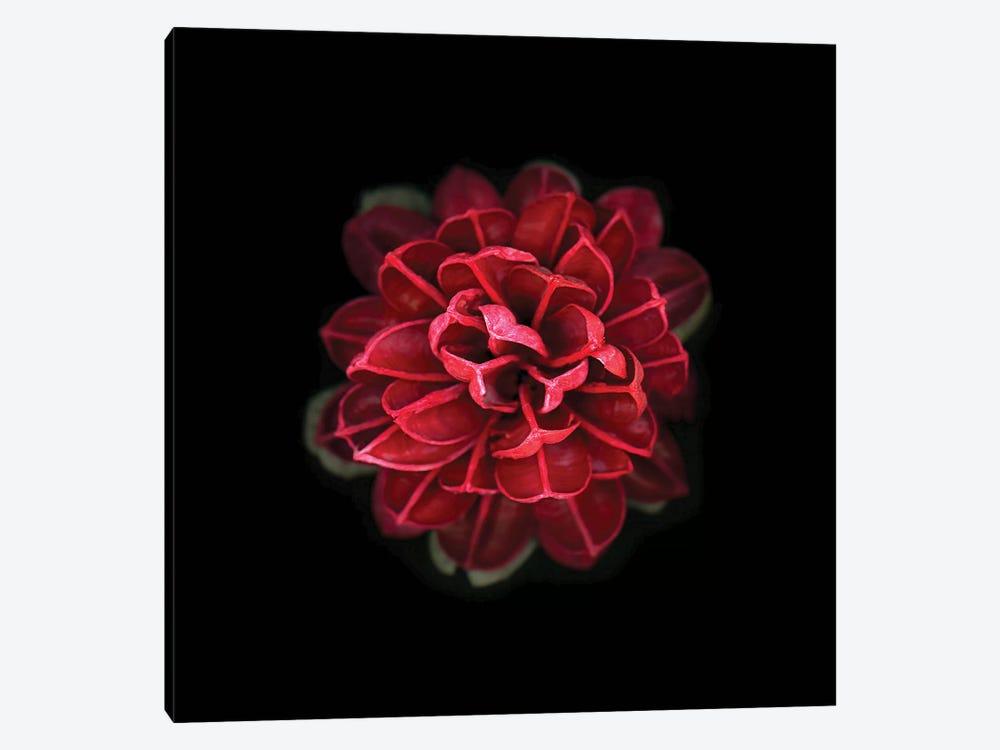 In Red by PhotoINC Studio 1-piece Art Print
