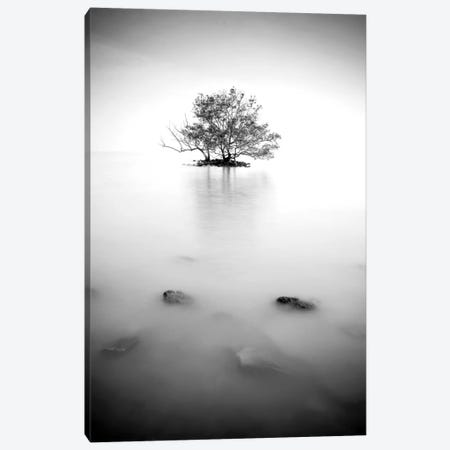 In The Mist II Canvas Print #PIS76} by PhotoINC Studio Canvas Artwork