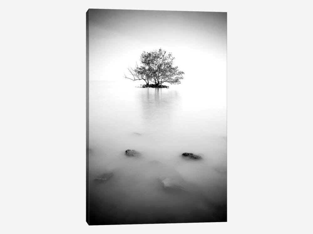 In The Mist II 1-piece Canvas Art Print