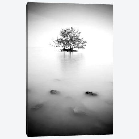 In The Mist II Canvas Print #PIS76} by PhotoINC Studio Canvas Artwork
