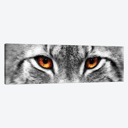 Lynx Eyes Canvas Print #PIS82} by PhotoINC Studio Canvas Art