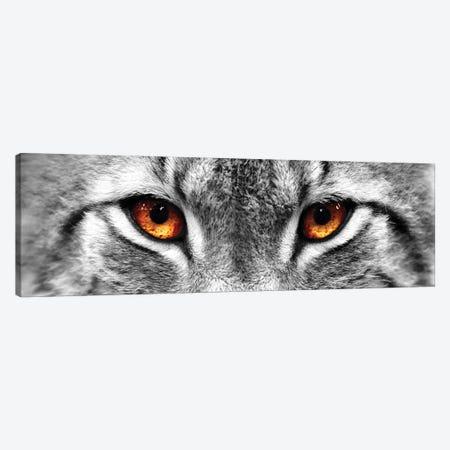 Lynx Eyes Canvas Print #PIS82} by PhotoINC Studio Canvas Art