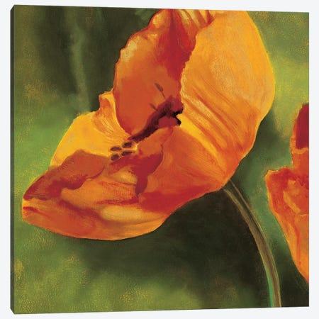 Coquelicots dans le soleil I Canvas Print #PIV4} by Pierre Viollet Canvas Print