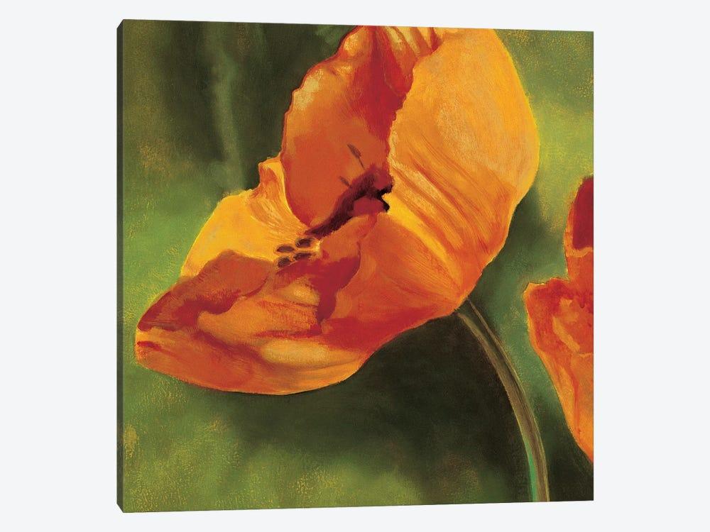 Coquelicots dans le soleil I by Pierre Viollet 1-piece Canvas Print
