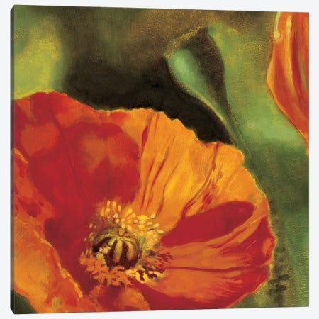 Coquelicots dans le soleil 2 Canvas Print #PIV5} by Pierre Viollet Canvas Art Print