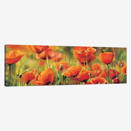 Symphonie de coquelicots Canvas Print #PIV9} by Pierre Viollet Canvas Artwork