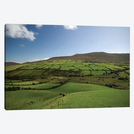 Irish Countryside, Ireland, Farms, Landscape, Scenic Canvas Print #PJW4} by Patrick J. Wall Canvas Print